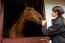 Pretty Woman Giving Carrot To Horse