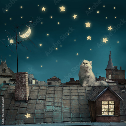 Carta da parati surreal fairy tale art background, cat on roof, night sky with moon and stars