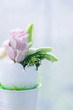 Eustoma flowers in an egg-shell on a light background