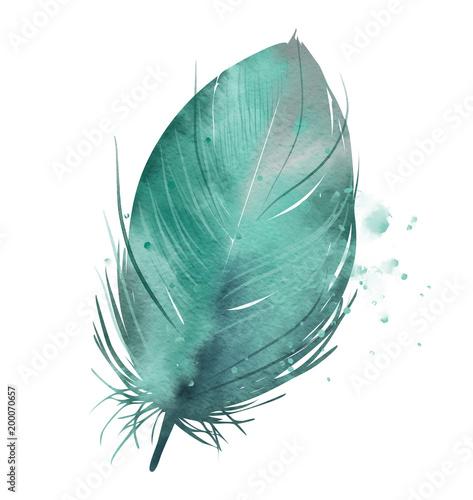 turkusowe-pioro-efekt-akwareli