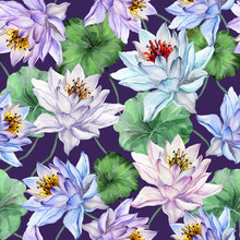 Exotic Floral Seamless Pattern. Large Blue, Pink And Lilac Lotus Flowers With Green Leaves On Dark Purple Background. Hand Drawn Illustration. Watercolor Painting.