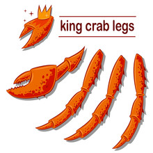 King Crab Legs And Claws. Vect...