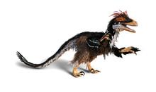 Deinonychus Feathered Dinosaur
