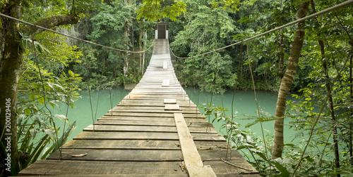 Bridge In Rio Blanco National Park Belize Canvas Print