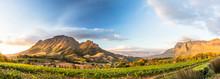 Wine Region Near Stellenbosch Looking At Simonsberg In South Africa