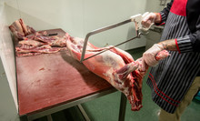 Mid Section Of Butcher Cutting...
