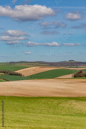 Staande foto Pistache Spring Sussex Landscape