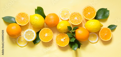 Summer tropical concept. Set of lemon, orange and green leaves on yellow. Banner.