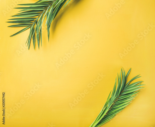 Green palm branches over yellow background, top view, copy space. Summer vacation or travel concept