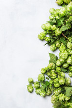 Green Hop Cones With Leaves On Gray Background, Top View