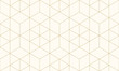 Pattern geometric gold line seamless luxury design abstract background.