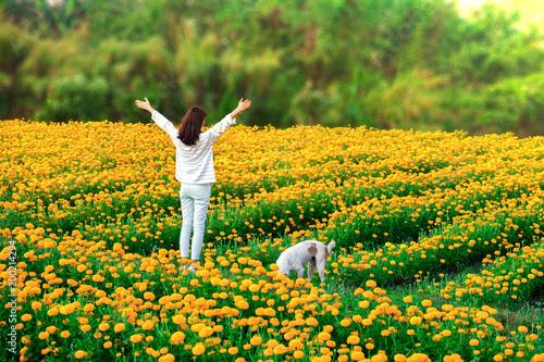 Zdjęcie XXL Piękny azjatykci kobieta turysta dwa ręki up w nagietków kwiatów polu z halnym tłem