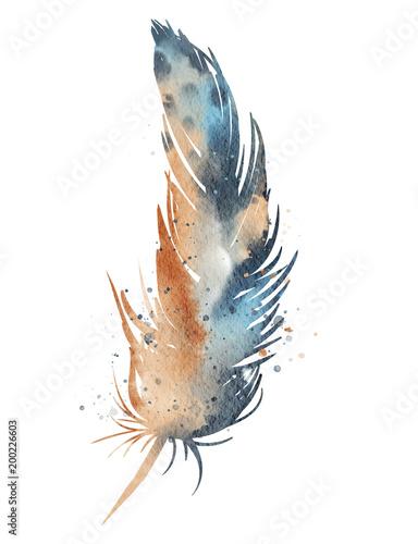 pomaranczowo-niebieskie-pioro-akwarela-biale-tlo