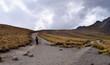 Aufstieg, Wanderung im nicht aktiven, erloschenen Vulkan Nevado de Toluca, Xinantécatl, Gebirge, Mexiko, mit Wanderrucksack, Gipfel, Höhe