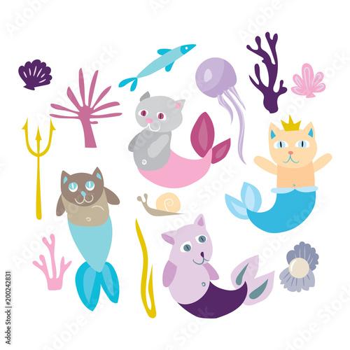 Photographie  Little mermaid kitten collection
