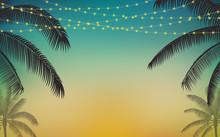 Silhouette Palm Tree And Hangi...