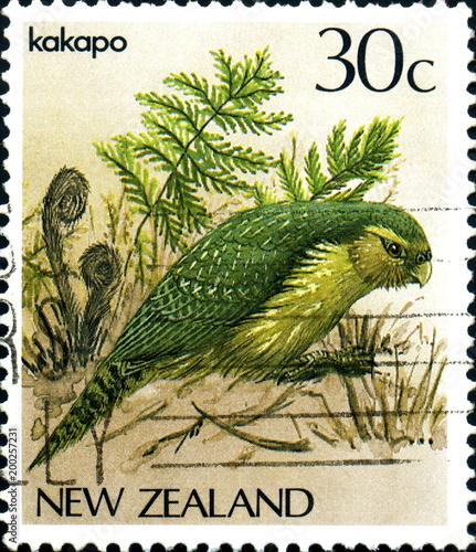 Fotografiet Kakapo New Zealand. Nouvelle zélande. Timbre postal.