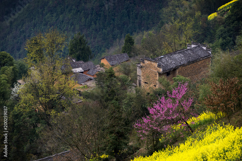 Foto op Plexiglas Nachtblauw the spring village of south of Anhui province in China