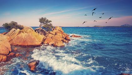 Fototapeta Do hotelu wilder Strand auf der Insel
