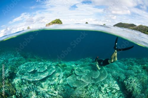 Foto op Canvas Onder water Snorkeler Exploring Healthy Coral Reef in Raja Ampat