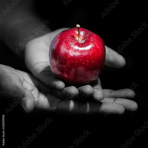 Foto Hands holding a red apple in black background