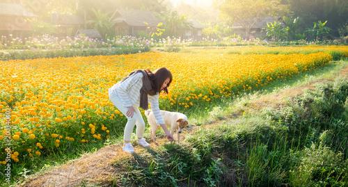 Fotomagnes Pięknej azjatykciej kobiety turystyczna sztuka z psim zwierzęciem domowym w nagietków kwiatów polu z halnym tłem