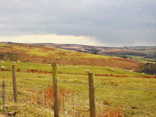 Deurstickers Honing Belthorn is a small moorland village situated to the south-east of Blackburn in Lancashire, England. Horse-racing track.