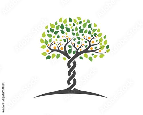 Family Tree Symbol Icon Logo Buy This Stock Vector And Explore