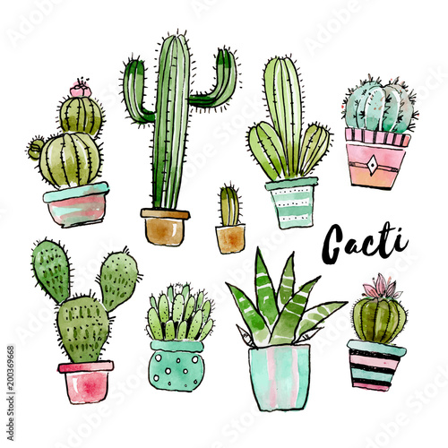Canvastavla Assorted watercolor cactus collection