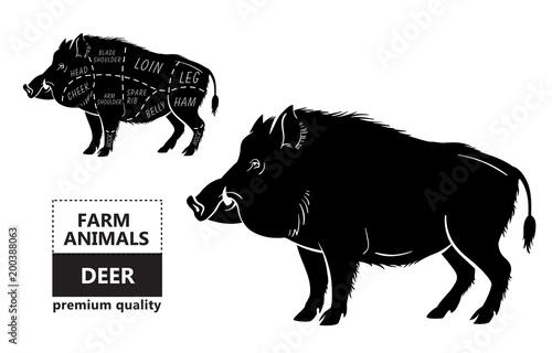 Wild hog, boar game meat cut diagram scheme - elements set on chalkboard Fotobehang
