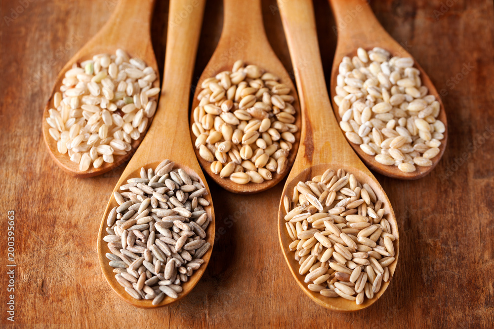 Fototapety, obrazy: Grains and cereals in wooden spoons. Oats, wheat, rye, secale, barley, integral rice.