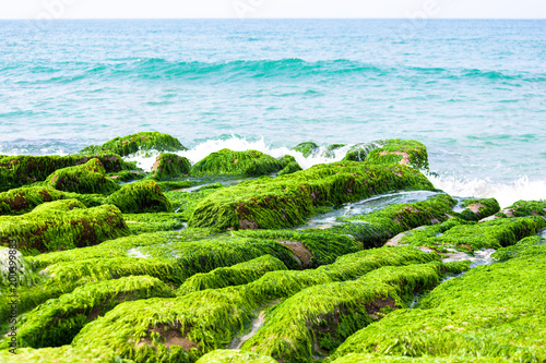 Poster Lime groen Laomei Green Reef - Taiwan North Coast seasonal features, shot in Shimen District, New Taipei, Taiwan.