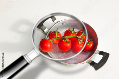 Quality control HACCP food safety (Hazard Analyses and Critical Control Points) - concept image with bunch of cherry tomatoes seen through a magnifying glass