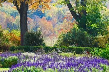 Obraz na SzkleNJ Botanical Gardens 1