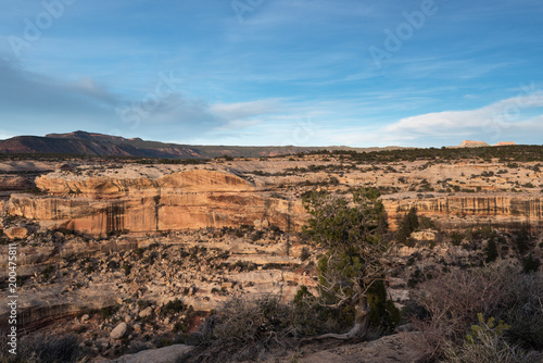 Keuken foto achterwand Verenigde Staten Natural Bridges National Monument at sunset. Located in southern Utah with Bears Ears in the distance.