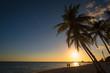 Palmenstrand bei Sonnenuntergang