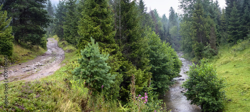 Tuinposter Pistache Beautiful landscape, panorama, banner, with a view of forest and river in the Carpathian Mountains, Western Ukraine