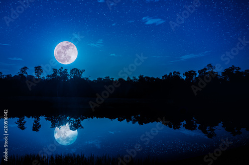 Foto op Canvas Zwart Fantasy sky and bright full moon above silhouettes of trees and lake.