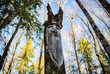 Slavic Pagan Idols On The Forest Temple. Veles