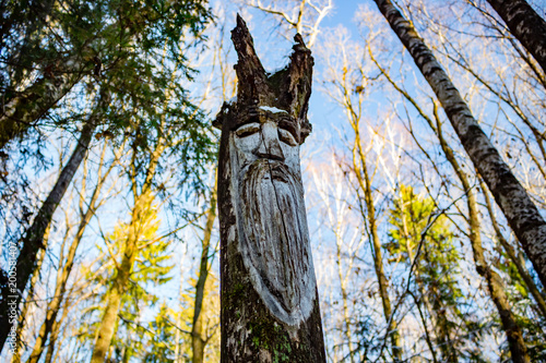 Obraz Slavic pagan idols on the forest temple. Veles - fototapety do salonu