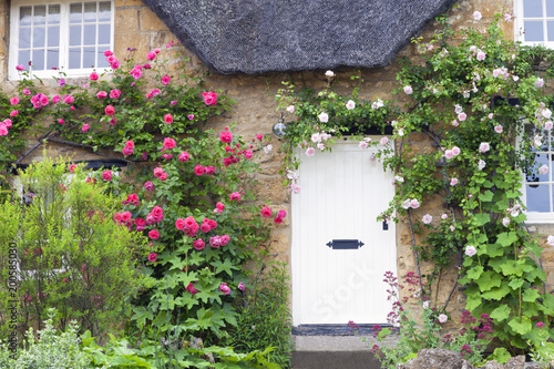 White wooden doors in Cotswold charming stone cottage with pink and red roses climbing the wall .