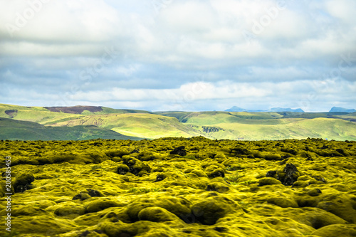 Foto op Aluminium Heuvel Panoramic view of old lava field covered by moss on Iceland