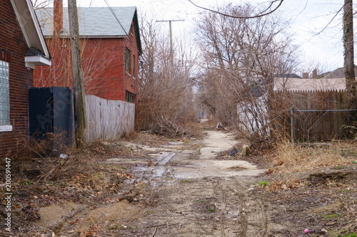 Fototapeten Schmale Gasse Alley abandoned in Detroit where nature has regained its rights.