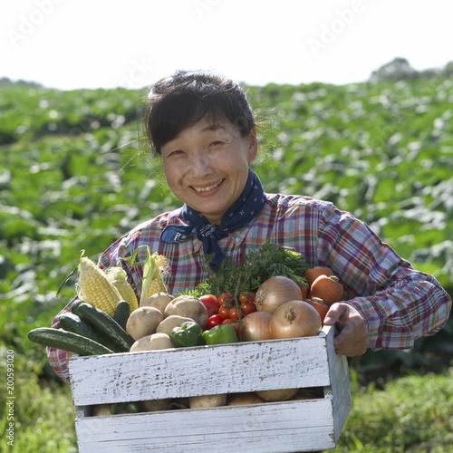 生産者が抱える野菜の箱