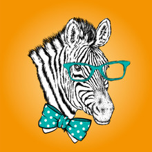 A Zebra With Glasses And A Tie. Vector Illustration.