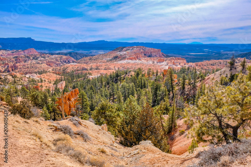 Foto op Canvas Zalm Bryce Canyon National Park