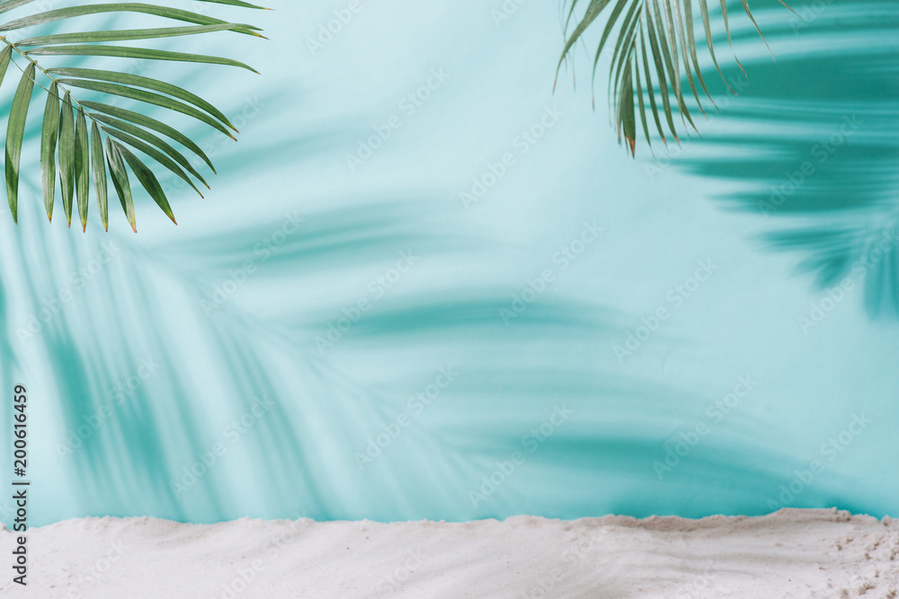 Fototapety, obrazy: Summer concept. Palm tree shadow on a blue  background.