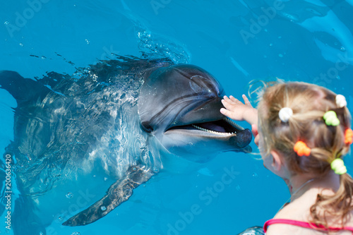 Happy child  hand touch a dolphin
