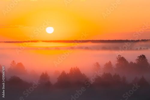 Poster Zonsondergang Amazing Sunrise Over Misty Landscape. Scenic View Of Foggy Morning