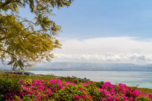 Top View Of The Sea Of Galilee...